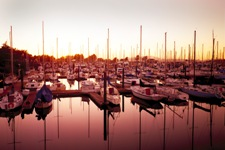 Marina in the Sacramento-San Joaquin Delta